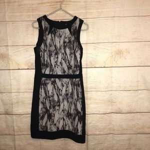Missimo supply co size XS career dress